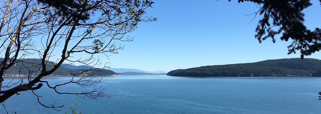 search properties on Orcas Island